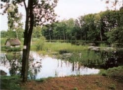 An Hirschens Teich und Mühle